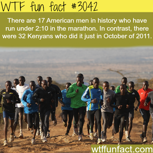The country with the fastest people -  WTF fun facts
