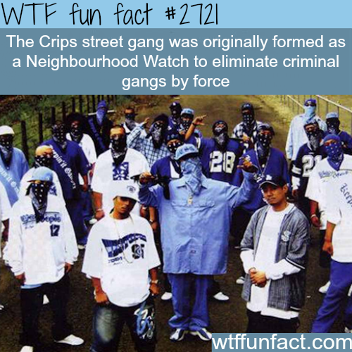 The Crips Street Gang - WTF fun facts