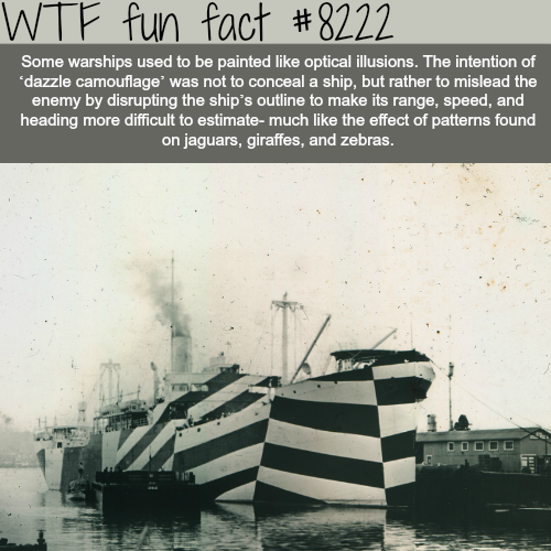 The Dazzle Comouflage - WTF fun facts