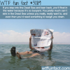 the dead sea facts