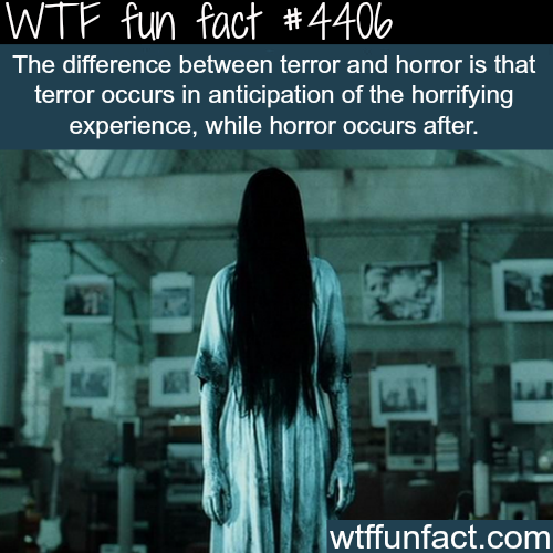 The difference between terror and horror -   WTF fun facts