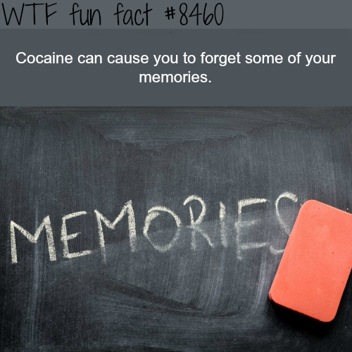 The effect of Cocaine on memories - WTF fun facts