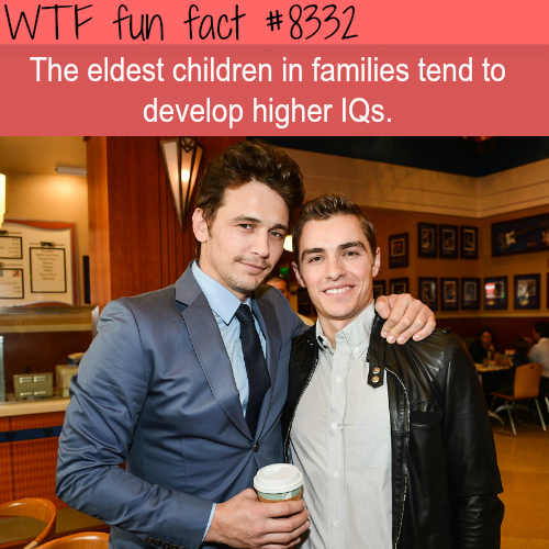 The eldest children have higher IQs - WTF fun facts