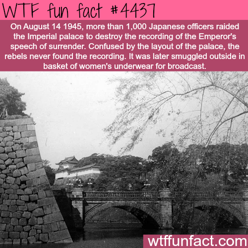 The Emperor's speech of surrender -   WTF fun facts