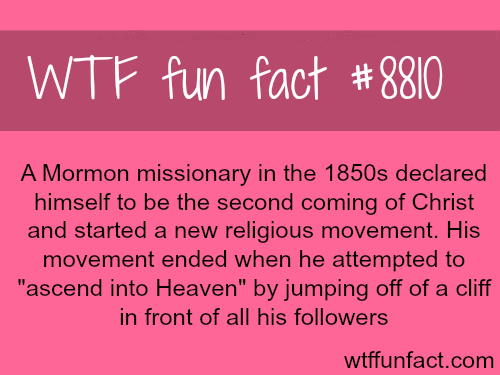 The end of a Mormonmissionary who pretended to be Jesus - WTF fun facts
