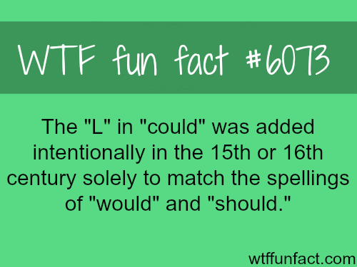 The English Language - WTF fun facts