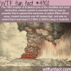 the eruption of kakatao wtf fun facts