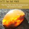 the fire opal wtf fun facts