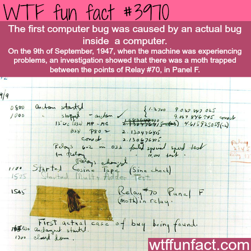 The first ever computer bug - WTF fun facts