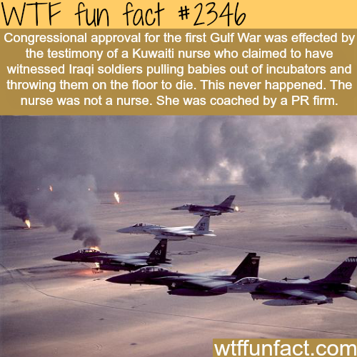The first gulf war - WTF fun facts