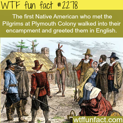 The first Native American who met the pilgrims -WTF fun facts