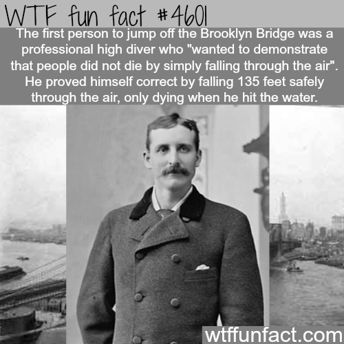 The first person to jump off Brooklyn Bridge -   WTF fun facts
