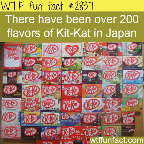 The flavors of Kit Kat in Japan -  WTF fun facts