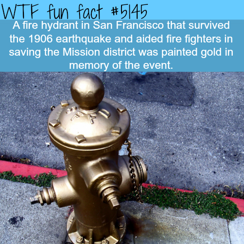 The golden fire hydrant - WTF fun facts