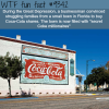 the great depression wtf fun facts