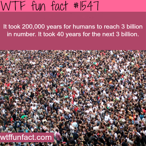 The growth of the human population -wtf fun facts