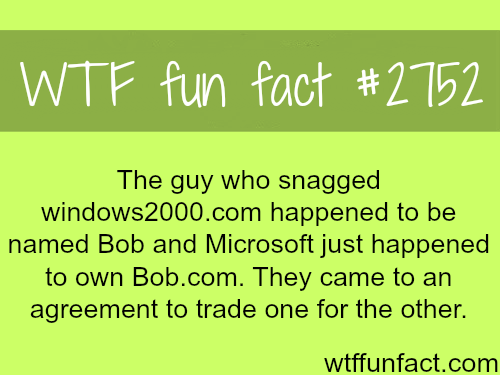 The Guy who Snagged Windows2000.com - WTF fun facts