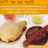 the hamdog wtf fun facts