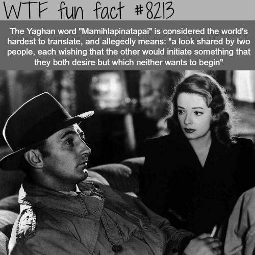 The hardest word to translate - WTF fun fact