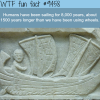 the history of sailing wtf fun fact