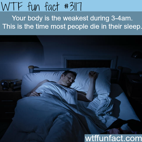 The hour most people die in their sleep -WTF fun facts