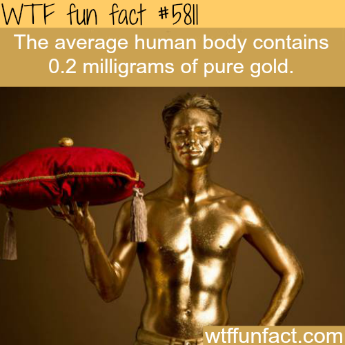 The human body contains gold - WTF fun facts