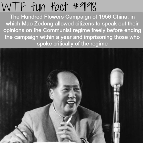 The Hundred Flowers Campaign - WTF Fun Facts