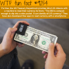 the ibill wtf fun facts