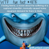 the irony of finding nemo wtf fun facts