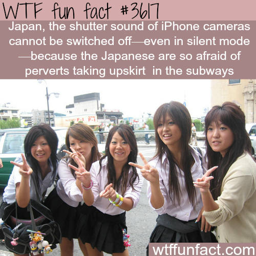 The Iphon's camera sound can't be turned off -  WTF fun facts