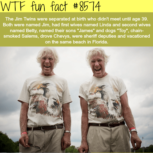 The Jim Twins - WTF fun facts