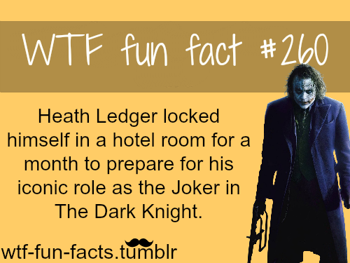 MORE OF WTF-FUN-FACTS are coming HERE <——