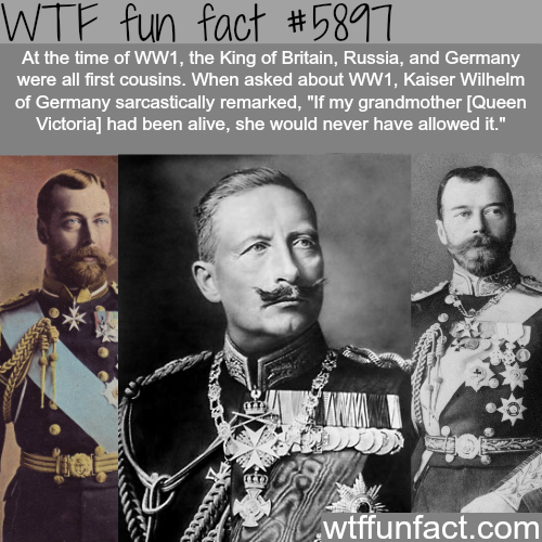 The King of Germany