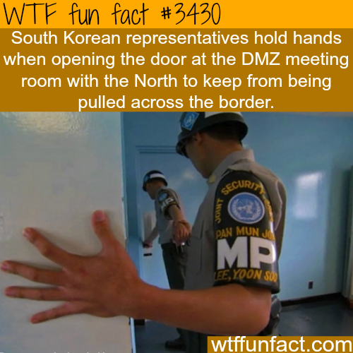 The Korean DMZ - WTF fun facts