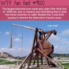 the largest trebuchet ever made wtf fun facts
