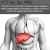 the liver wtf fun facts