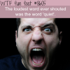 the loudest word ever shouted wtf fun facts