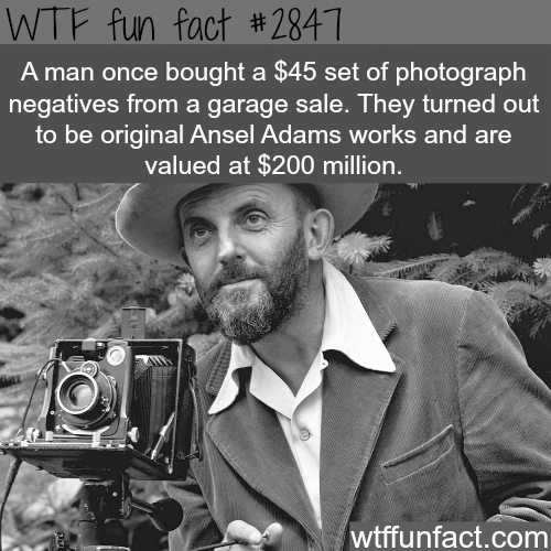 The luckiest man on earth? -  WTF fun facts