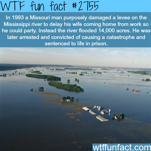 The man who hated his wife the most - WTF fun facts