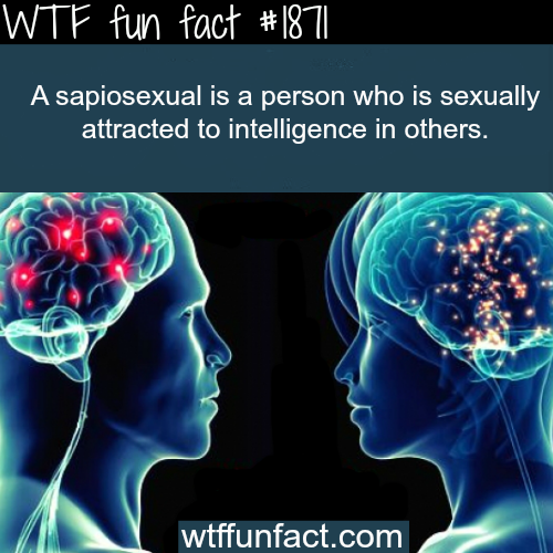 The meaning of sapiosexual - WTF fun facts