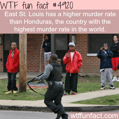 The most dangerous place in the world? - WTF fun facts