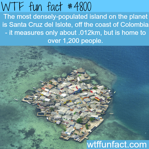 The most densely-populated island in the world - WTF fun facts