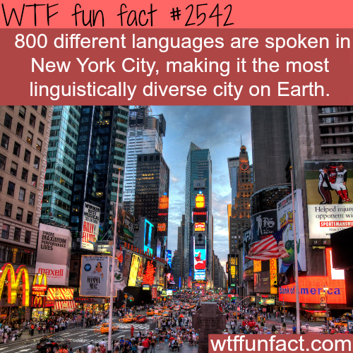 The most diverse city in the world - WTF fun facts