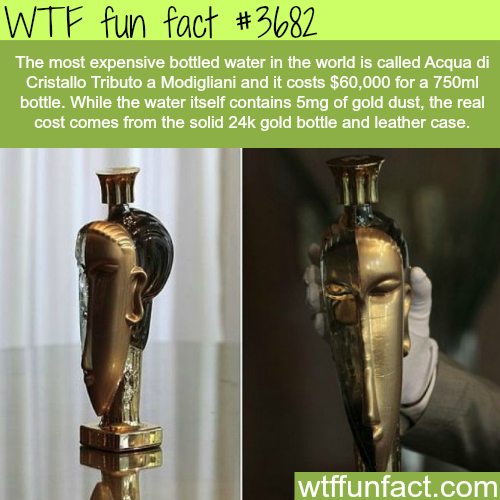 The most expensive bottled water in the world -  WTF fun facts