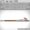 the most expensive pencil in the world wtf fun