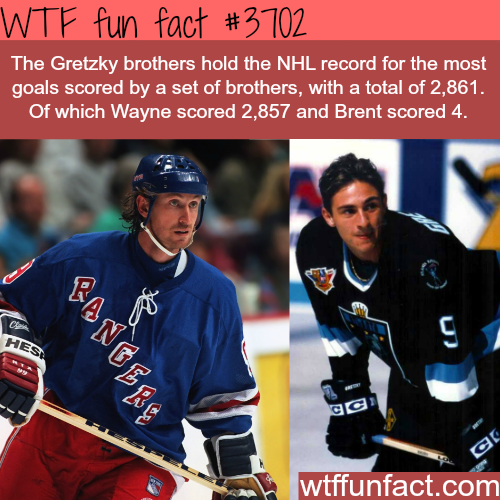 The most goals scored in the NHL by two brothers -  WTF fun facts