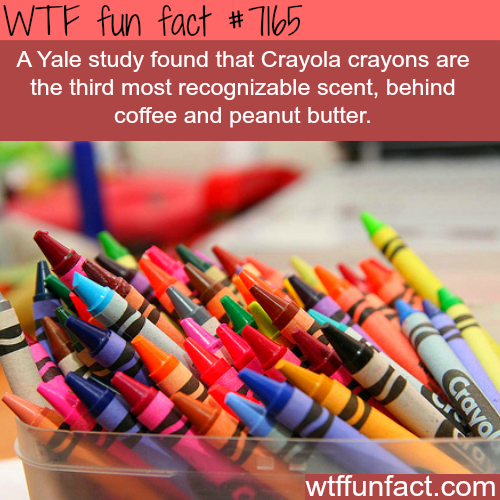 The most recognized scent in the world - WTF Fun Fact