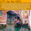 the most sought after job in venice wtf fun