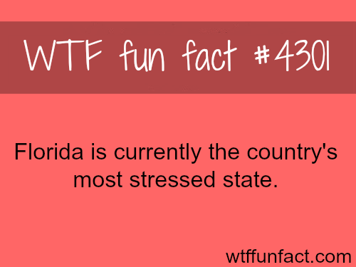 The most stressed state -  WTF fun facts