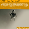 the most unbelievable coincidence in the world